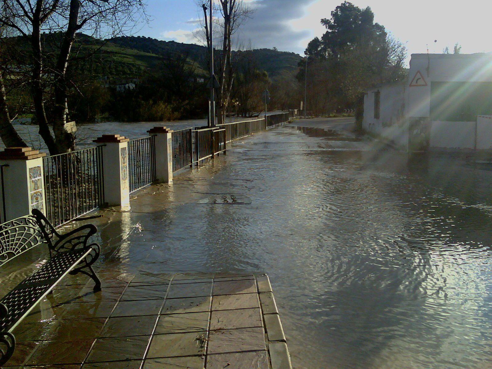 Río Genil 09-03-2010