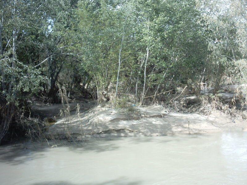 Río Genil 08-04-2010