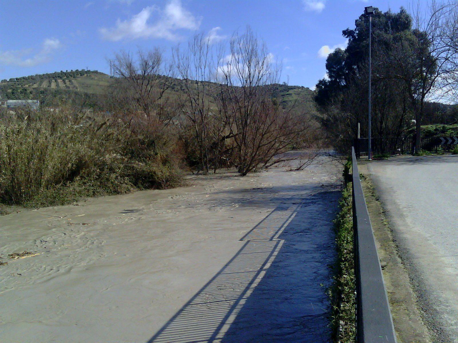 Río Genil 01-03-2010