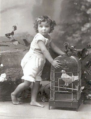 1900sbloomers cage-copie-1