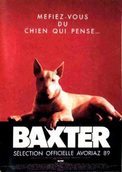 bull terrier movie baxter le blog de viva le sinema over blog com 7197