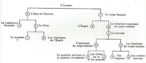 nouveau-diagramme-2.jpg