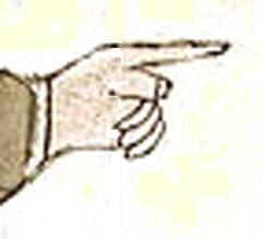 main-de-mandeville-copie-1.png