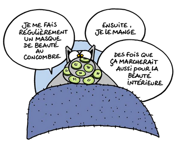 humour-le-chat-2.png