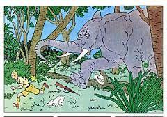 chasse a l'elephant