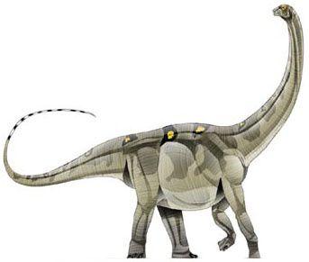 titanosaurus faletti