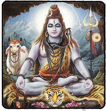 Carte Shiva 2
