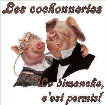 cochoneries-du-dim.JPG