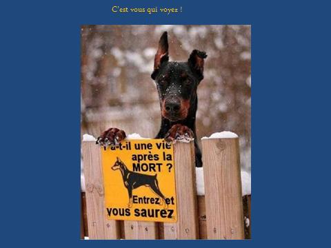 securite-.01.png