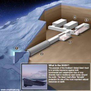 Svalbard-Global-Seed-Vault-3-300x300.jpg