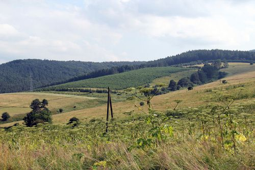 photo-sanok-paysages-carpates-bieszczady-pologne.jpg